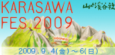 karasawa_FES2009