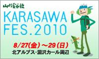 karasawa_FES2010